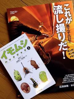 イモムシハンドブック 2 と 池之平昌信のこれが流し撮りだ!