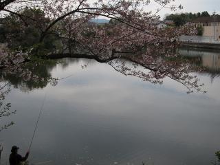 東楽園(柱大池)