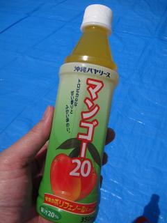 沖縄バヤリース マンゴー20