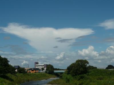 面白い雲のかたち