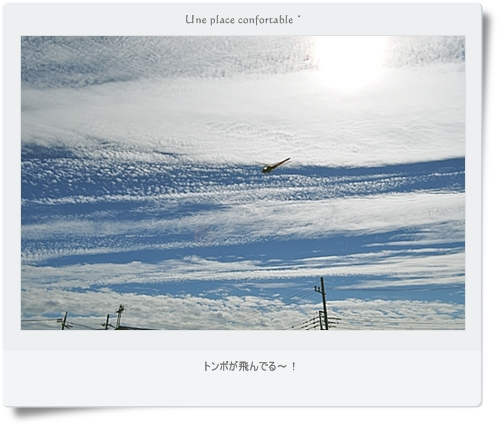 2011.10 ブログ用フォト 011