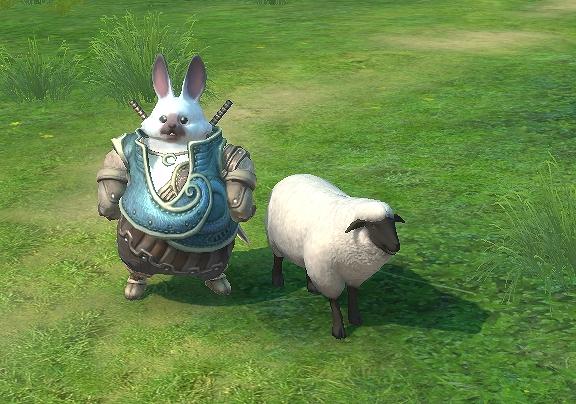 ツベオールと羊