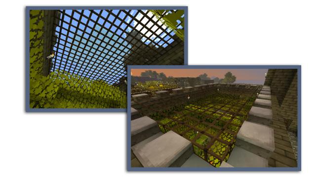MC増築庭園ガラス天井