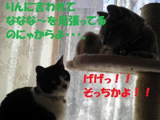 20130317-9.jpg