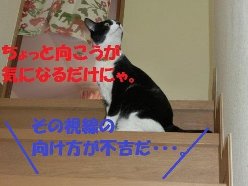20130320-4.jpg