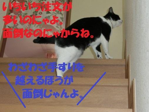 20130320-8.jpg