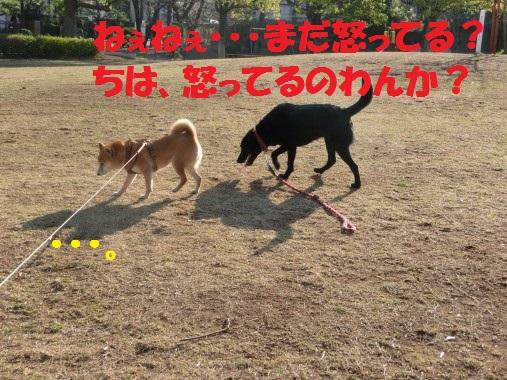 20130323-007.jpg