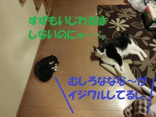 20130514-6.jpg