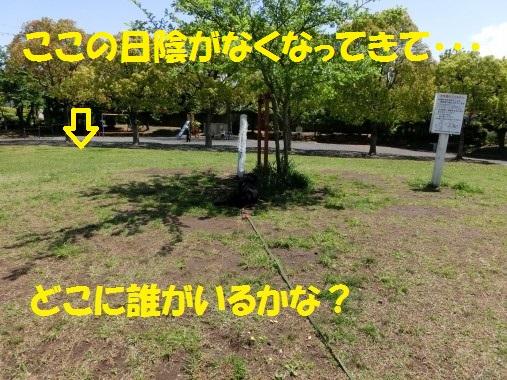 20130515-1.jpg