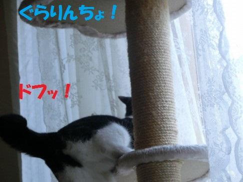 20130522-8.jpg