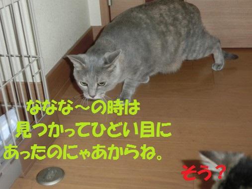 20130620-7.jpg