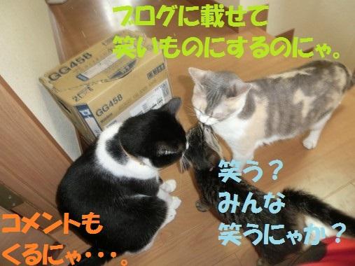 20130711-012.jpg