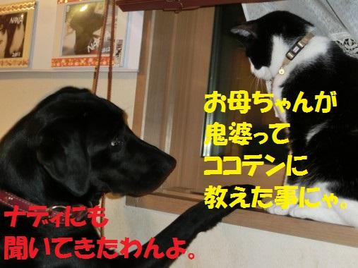 20130712-006.jpg