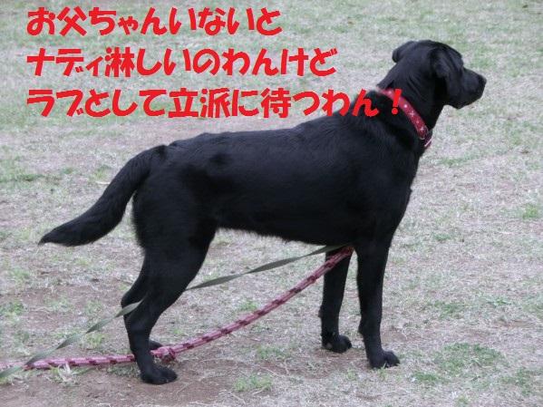 20130721-1.jpg