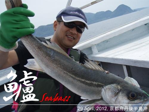 11-20101211-004.jpg
