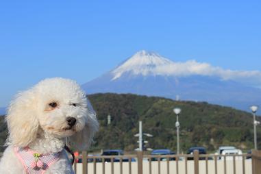 富士山とうち