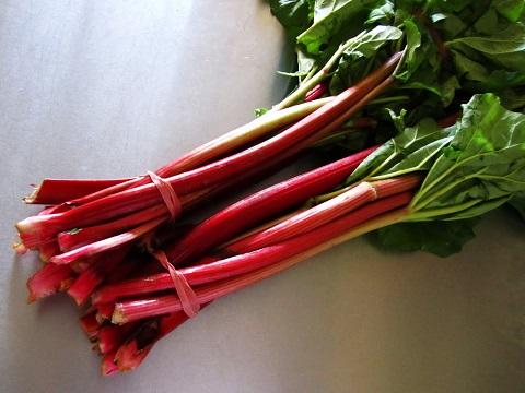 rhubarb-warb-warb!_20131213101636308.jpg