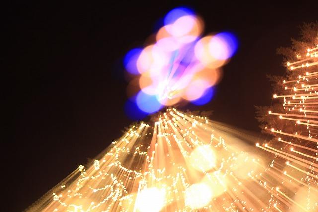ツリー祭り