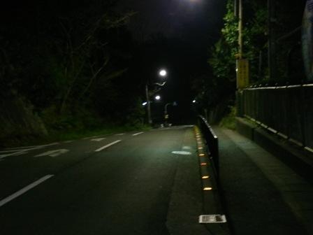 DSC_0083[1]