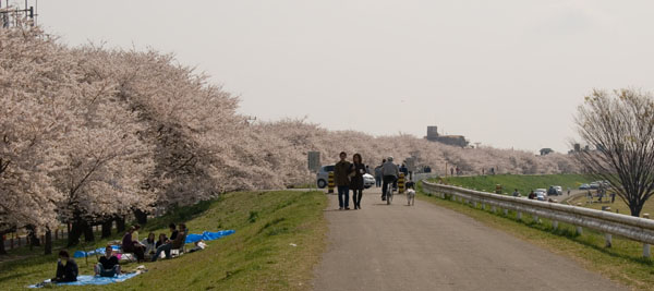 Kumagaya2007_2.JPG