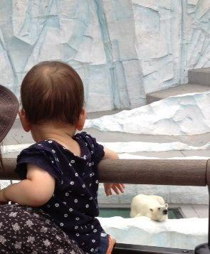 はるちゃん 動物園