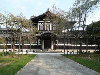 奈良公園4P1080540