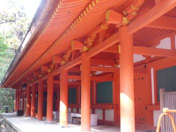奈良公園14P1080558