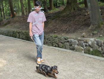 奈良公園7-2P1080547のコピー