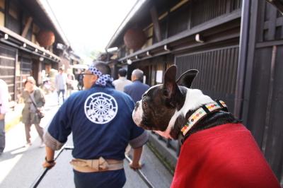 高山旅行 ① 白川&さんまち散歩