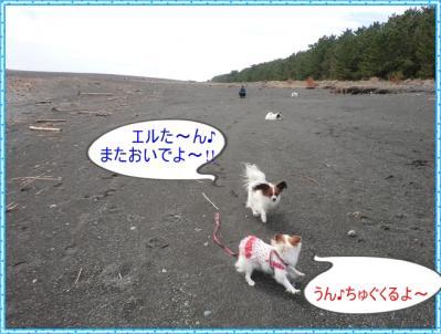 コピー ~ CIMG0029
