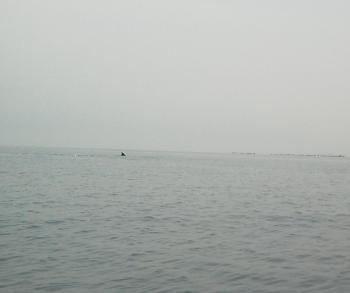 三島めぐり 021