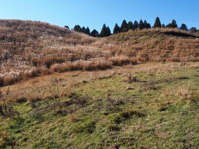 23九州自然道に入ってすぐの景色