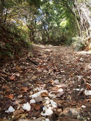 2登山道 1