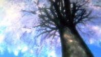銀魂 生と死の桜