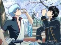 銀魂 酒と銀さんと土方