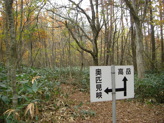 takadake2011.11 032