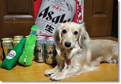 ビール 011