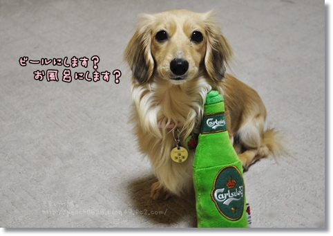 ビール 020