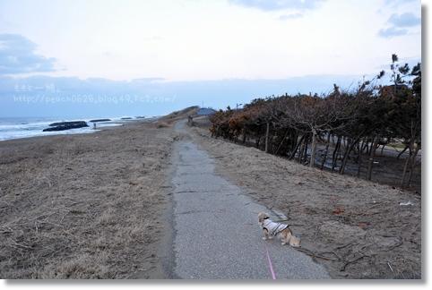 松任海浜公園20130120 021