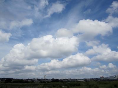 みぃーの30キロ走 素敵な雲