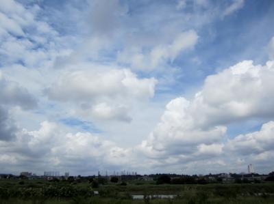 みぃーの30キロ走 素敵な雲2