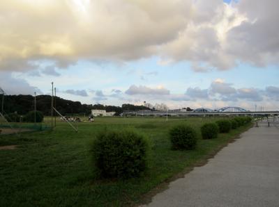 みぃーの30キロ走 丸子橋陸橋付近