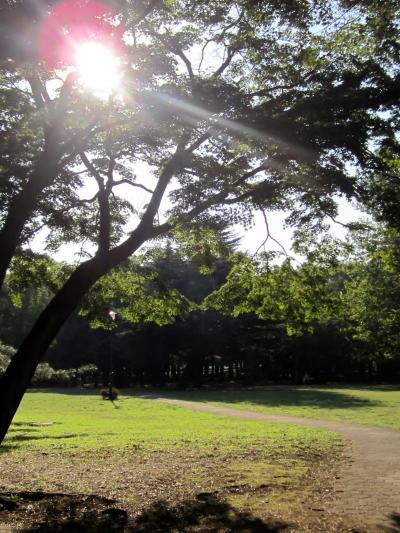 都立野川公園 もう午後の公園