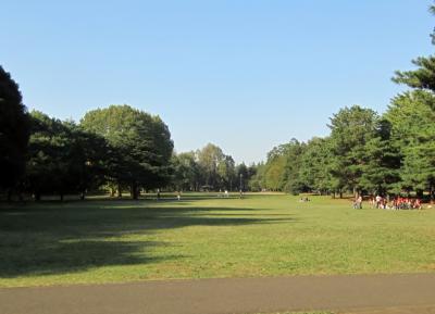 都立野川公園 公園の広場