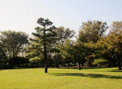 都立野川公園 公園入り口付近