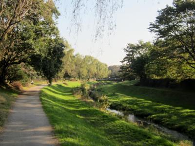 都立野川公園 北側の公園風景