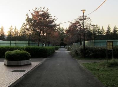 都立野川公園 テニスコート前