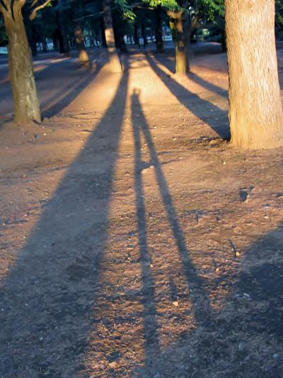 都立野川公園 私の影2
