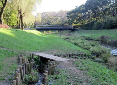 都立野川公園 水辺でおさしん