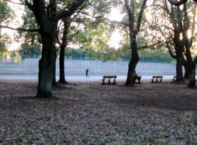 都立野川公園 壁打ちテニス